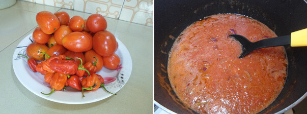 making-tomato-stew